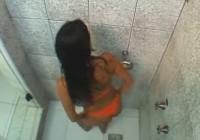 Slapjais sekss dušā